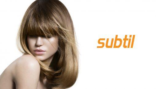 subtil-2016_02es